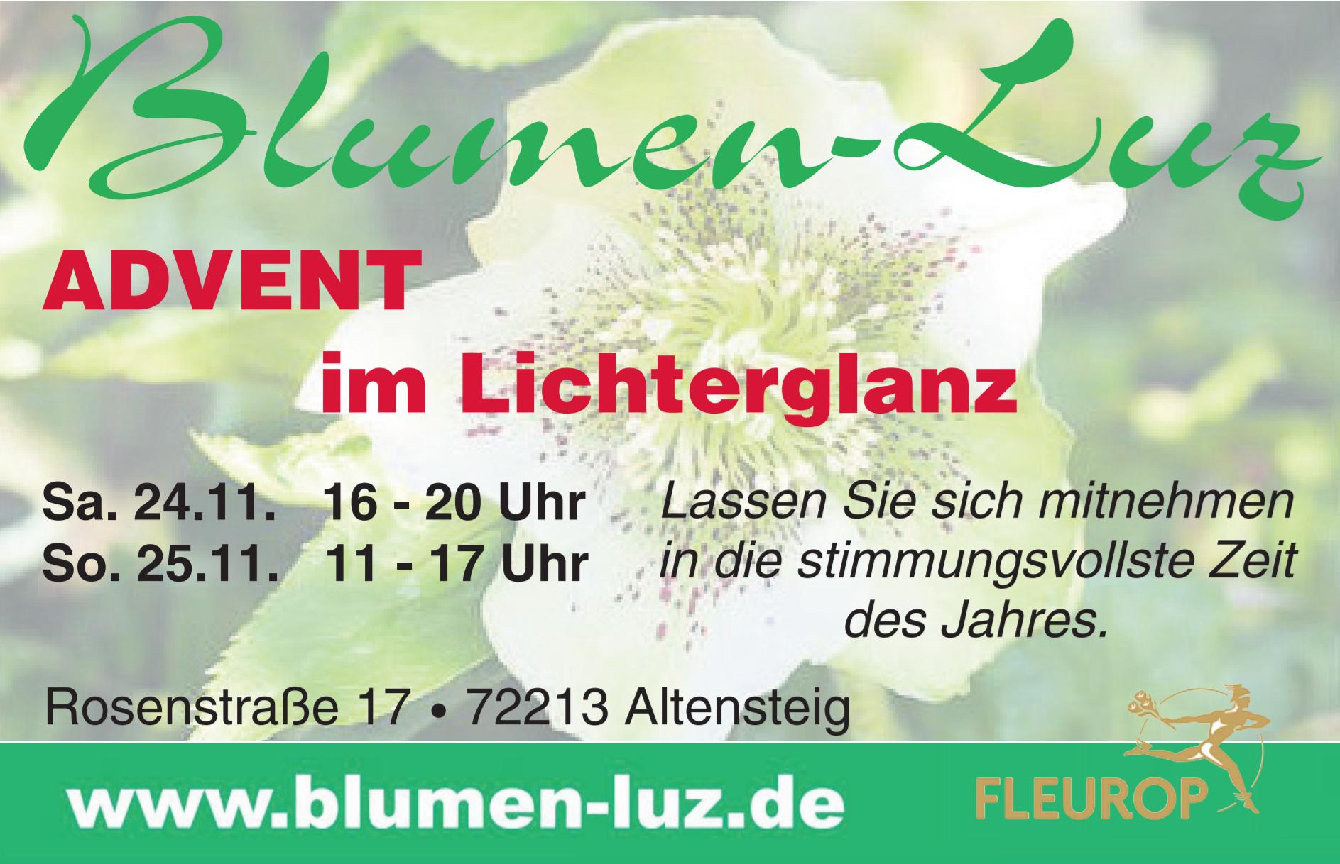 Advent_im_Lichterglanz_Blumen-Luz_Altensteig