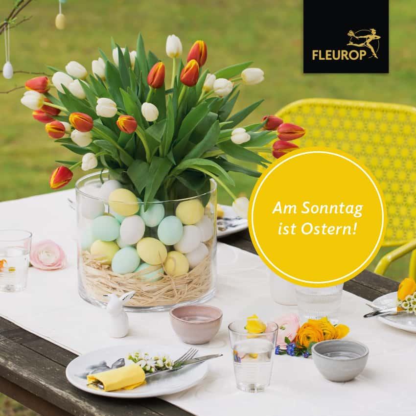 Ostern 2019 Blumen-Luz Altensteig